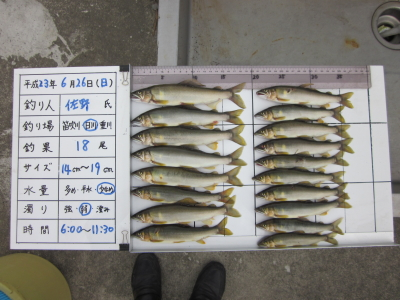 20110626_sano_hikawa_3.jpg