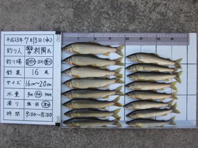 2011h230713_muraoka_1.jpg