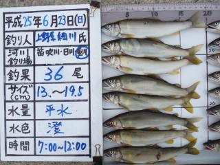 2013h250623hosokawa-2.jpg