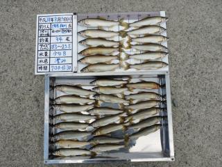 2012h240819hosokawa-1.jpg