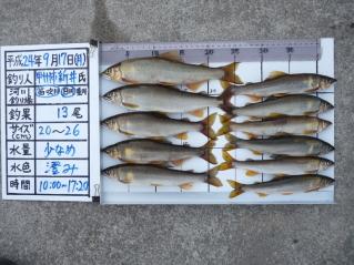 2012h240917arai-1.jpg
