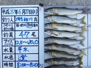 2013h250622hosokawa-1.jpg