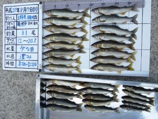 2013h250818hosokawa-1.jpg